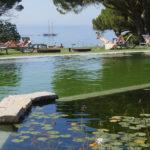 IOB Swimming Pond 2