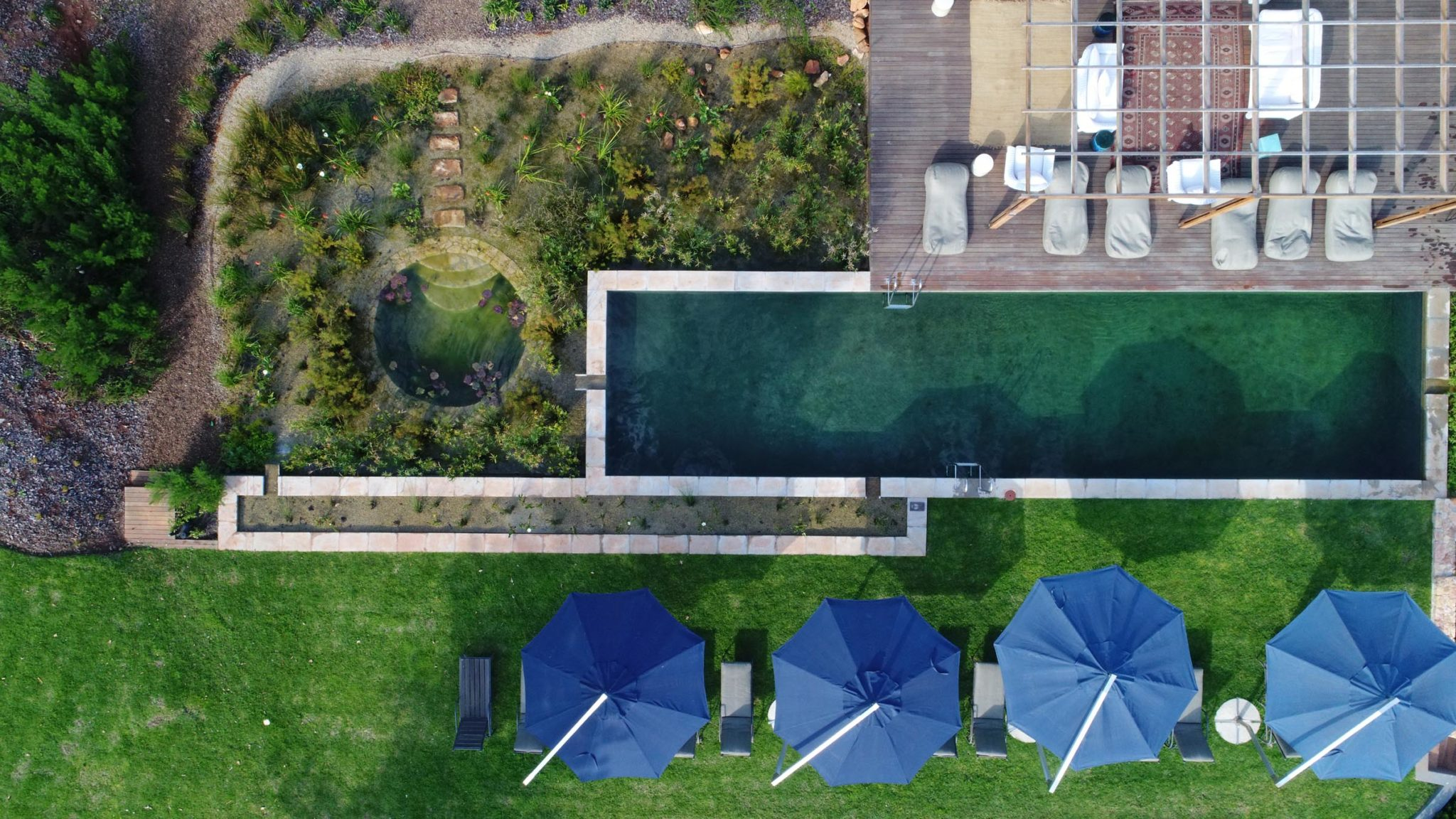 IOB - experience in natural pools